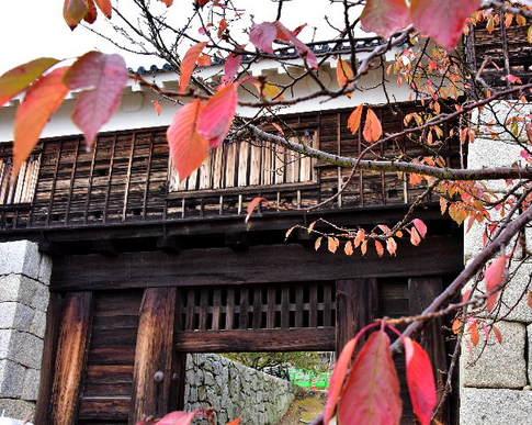1511 松山城D8D_8407.jpg