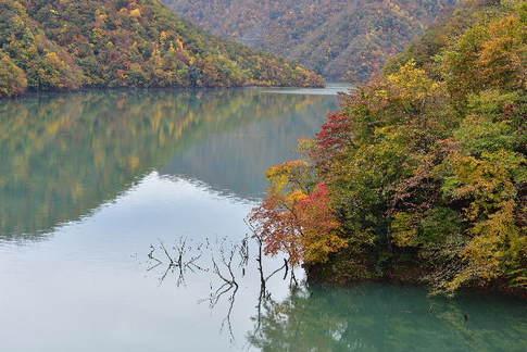 1811-610 徳山ダム D8D_2391.jpg